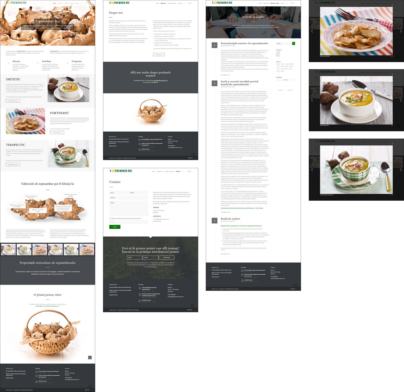 Topinambur Eco - web site